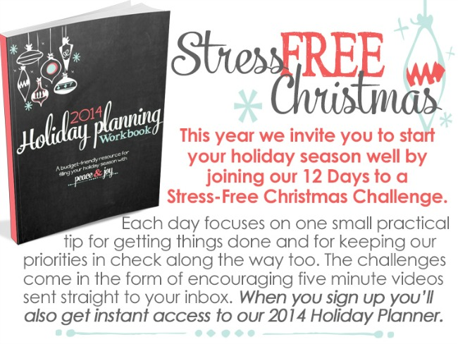 subscribebox_stressfreeholiday_ZONDERVANTRACKING_temp