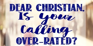 "Is Your ""Calling"" is Over-rated?"
